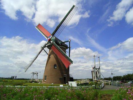 Come Imparare l'Olandese da Soli