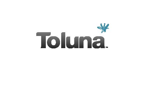 Recensione di Toluna